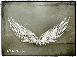 Angel wings SUM Nation