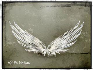 Angel wings SUM Nation