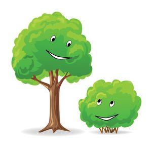 Tree&Bush