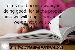 Galatians 6 9