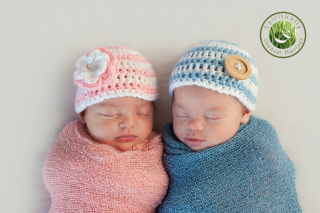 Twinbabies SUM