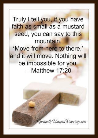 Matthew 17 20