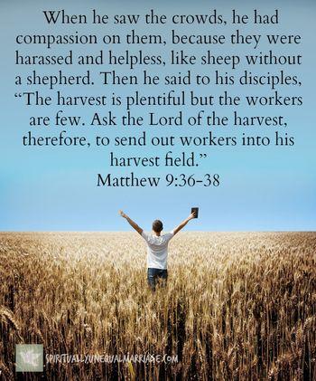 Matthew 9 36 38