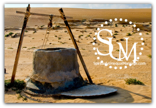 Old Well SUM logo