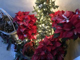 Christmas Door 2018