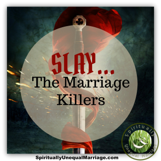 Slay The Marriage Killers
