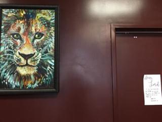 Lynfield lion 2