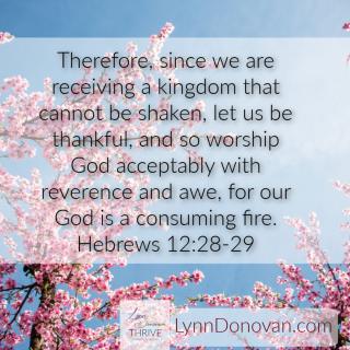 Hebrews 12 28 Shaking lynndonovan com (2)